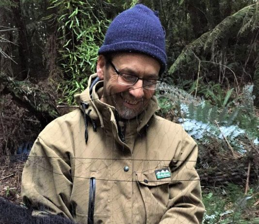 Western Bay of Plenty District Council Community relations Advisor Glenn Ayo captures a kōkako for banding and relocation to Ōtanewainuku Forest in Oropi.