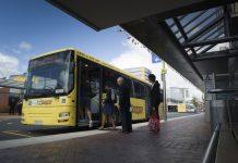 tauranga bus network