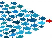 picture of a school of blue fish following a red fish