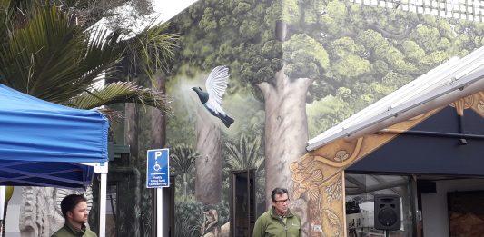Bay of Plenty mural