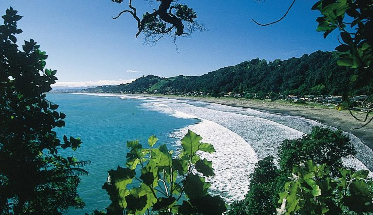 Closing the Gap Candidate Survey – Western Bay of Plenty District Council